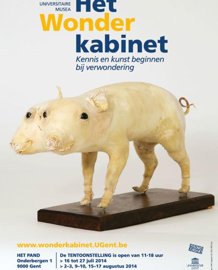 Gentse Universitaire Musea openen 'Het Wonderkabinet'